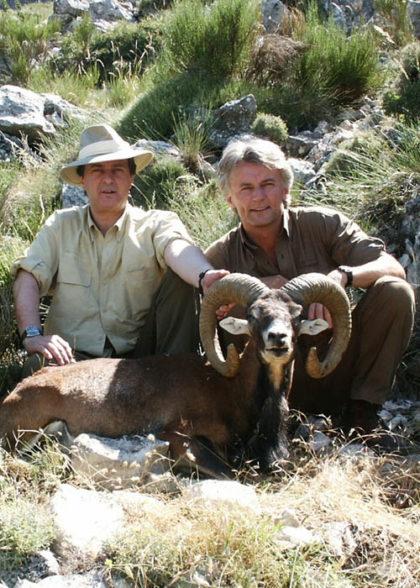 mouflon-ed-al-2