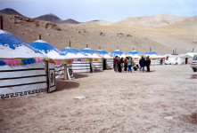 chinese-sheep-camp-yurts