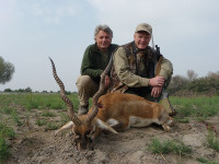 craig-boddingtons-pakistan-blackbuck