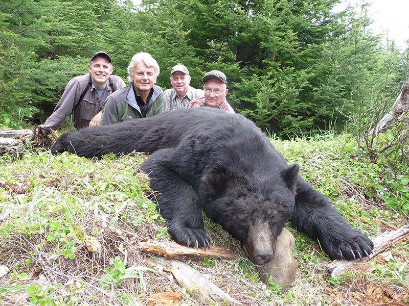 black-bear-with-dr-speegle