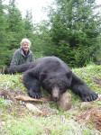 vancouver-island-black-bear