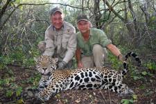 doug-yajkos-darted-jaguar